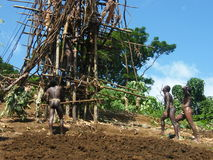 Ceremonia de los naturales en Vanuatu foto de archivo libre de regalías
