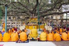 Ceremonia debajo del árbol del bodhi fotografía de archivo