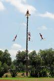 Ceremonia del Volador, Mexico Royalty-vrije Stock Afbeeldingen