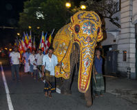 A ceremonial elephant parades ahead of Buddhist followers down the streets of Kandy in Sri Lanka. Stock Photography