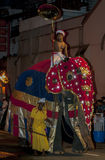 A ceremonial elephant parades down a street in Kandy during the Esala Perahera in Sri Lanka. Royalty Free Stock Photos