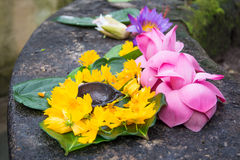 Ceremonial flowers Stock Images