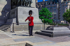Ceremonial Guard Royalty Free Stock Photography
