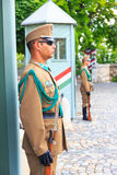 Ceremonial guard at the Presidential Palace. Royalty Free Stock Image