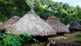 Ceremonial village of the indigenous tribes of the Sierra Nevada de Santa Marta, Colombia. Abandoned village of the indigenous people of the rain forest of the Stock Images