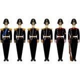 Ceremonialny kształt admiralicja batalion royalty ilustracja