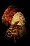 ceremoniell maskeringstatanua för 19th århundrade Royaltyfri Fotografi
