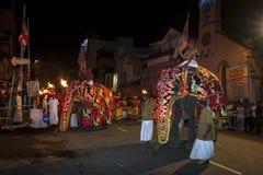 Ceremoniella elefanter ståtar till och med gatorna av Kandy under Esalaen Perahera i Sri Lanka Arkivbild