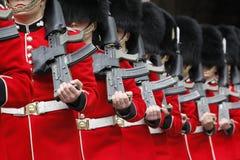 ceremoniella guards Arkivfoto