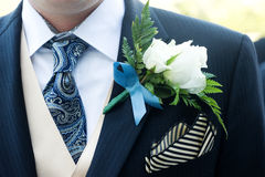 Ceremony suit Royalty Free Stock Image