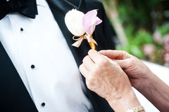 Ceremony suit Royalty Free Stock Images