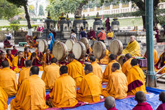 Ceremony under the bodhi tree Royalty Free Stock Images