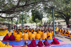 Ceremony under the bodhi tree Royalty Free Stock Photography