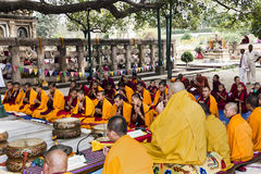 Ceremony under the bodhi tree Stock Photos