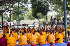 Ceremony under the bodhi tree Stock Images