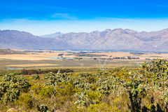 Ceres Valley. The town of Ceres in the western cape, South Africa lies in a very fertile valley known for its fruit farming and other agriculture. The town is Royalty Free Stock Image