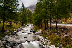 Ceresole Reale Stock Photography