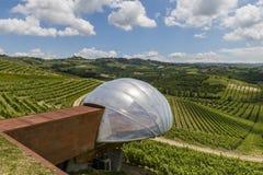 Ceretto vinodling med vingårdar royaltyfria bilder
