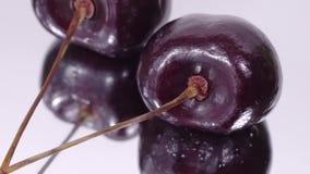 Cereza Cerezas maduras que giran sobre el fondo blanco Cereza dulce madura negra giratoria Vídeo de la rotación 4K UHD Colocación almacen de metraje de vídeo