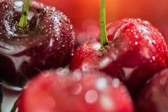Cereza con gotas del agua Foto de archivo libre de regalías
