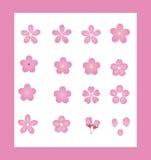 Cereza de Japón Sakura del vector Fotografía de archivo