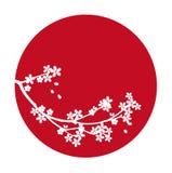 Cereza de Japón Sakura del vector Imágenes de archivo libres de regalías