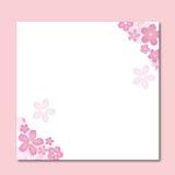 Cereza de Japón Sakura del vector Imagenes de archivo