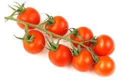 Cereza de los tomates imagen de archivo