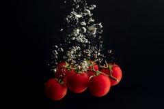 Cereza de los tomates en el agua como plantilla Fotografía de archivo libre de regalías