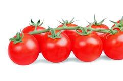 Cereza del tomate Imágenes de archivo libres de regalías