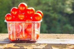 Cereza del tomate Fotografía de archivo libre de regalías