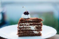 Cereza deliciosa de la torta de las pinturas de la torta juicyly dulce foto de archivo libre de regalías