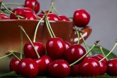 Cereza dulce roja Fotografía de archivo