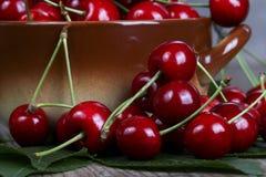 Cereza dulce roja Fotos de archivo