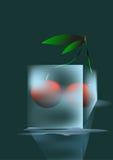 Cereza e hielo Imágenes de archivo libres de regalías