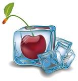 Cereza en cubo de hielo Imágenes de archivo libres de regalías