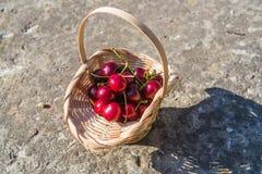Cereza en la cesta Imágenes de archivo libres de regalías
