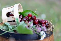 Cereza en una cesta y flores salvajes en un barril de vino de madera en un jardín en verano Copie el espacio Foco suave imagenes de archivo