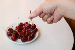 Cereza madura en la mano y en una placa blanca, foco selectivo a mano Foto de archivo libre de regalías
