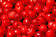 Cereza, roja Imagen de archivo