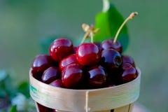 Cereza roja dulce en una cesta en un barril de vino de madera en un jardín en verano Copie el espacio Foco suave foto de archivo