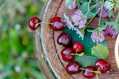 Cereza roja dulce en una cesta y flores salvajes en un barril de vino de madera en un jardín en el verano Copie el espacio Foco s fotos de archivo libres de regalías