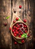 Cereza roja en la herramienta de la taza y del metal para las cerezas Foto de archivo
