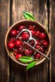 Cereza roja en la herramienta de la taza y del metal para las cerezas Fotografía de archivo