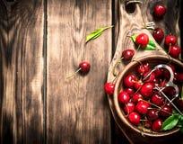 Cereza roja en la herramienta de la taza y del metal para las cerezas Imagenes de archivo