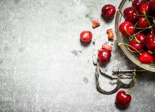 Cereza roja en la herramienta de la taza y del metal para las cerezas Fotografía de archivo libre de regalías