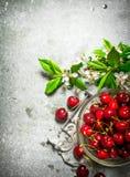 Cereza roja en la herramienta de la taza y del metal para las cerezas Fotos de archivo
