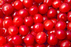 Cereza suave de la fruta roja Foto de archivo