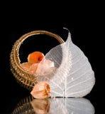Cereza y hoja de invierno imagenes de archivo