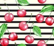 Cereza y línea libre illustration